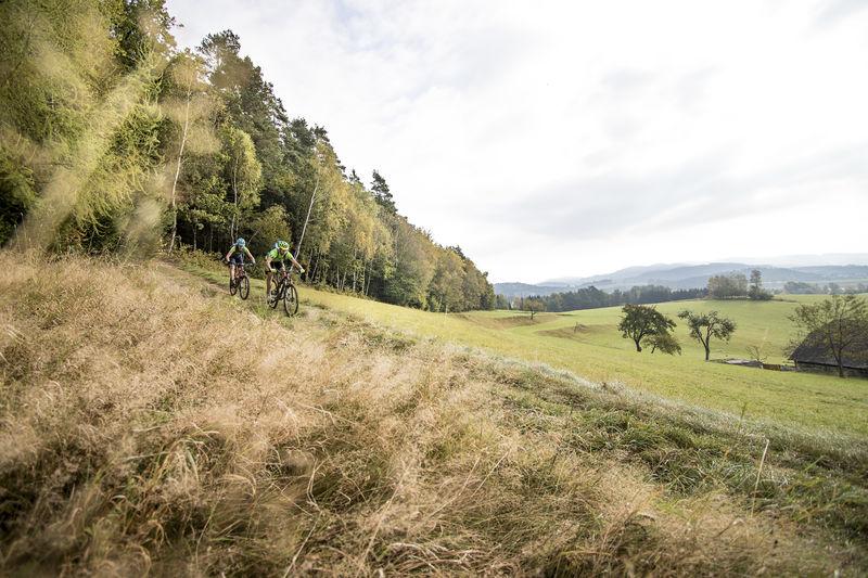 Mountainbike Mühlviertel - OÖ Tourismus Moritz Ablinger