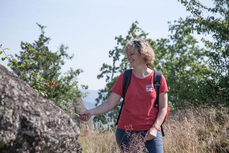 Naturpark Mühlviertel - OÖ Tourismus Martin Fickert